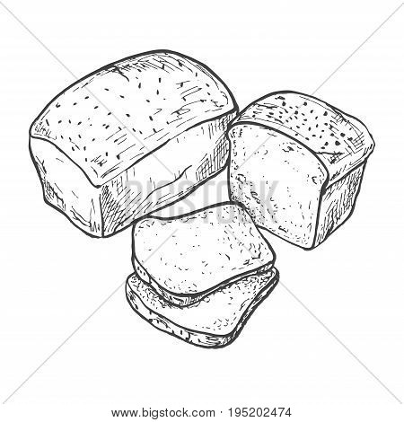 Rectangular loaf of bread. Sliced bread. Vector illustration of a sketch style.