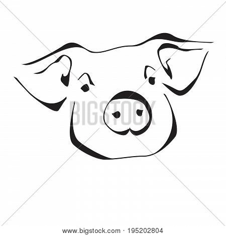 Pig in flat style isolated on white background. Pig icon for web design