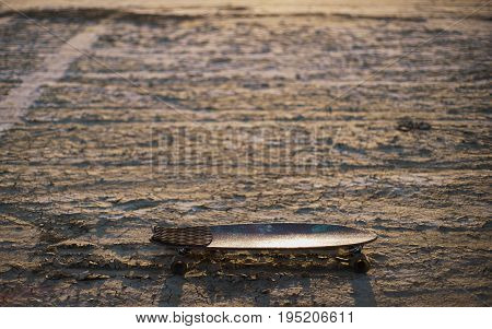 Skateboard or longboard stuck in the sand in the desert at sunset
