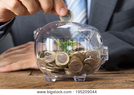 Closeup of businessman putting coin into transparent piggybank with plant