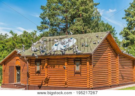 Purebred pigeons near a wooden dovecote and on a stone platform in Mezhyhirya near Kiev.