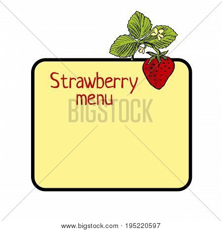 hand drawn cute Strawberry frame vector illustration
