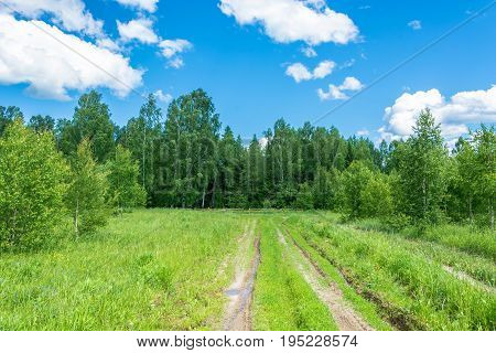 Dirt Road Going To The Holy Pokrovsky Source.