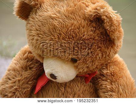 teddy bear looks so sad that brokes my heart
