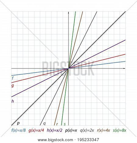 vector illustration shows the location of the lines on the coordinate plane and their functions the coordinate plane.