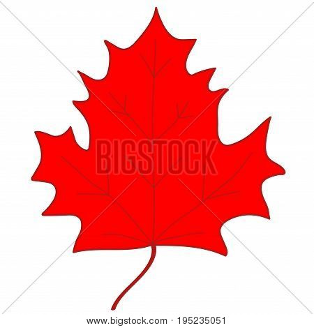 Maple leaf sign. Red plane icon isolated on white background. Color nature logo. Botany autumn wood or garden symbol. Ecology flat silhouette. Foliage mark. Stock vector illustration