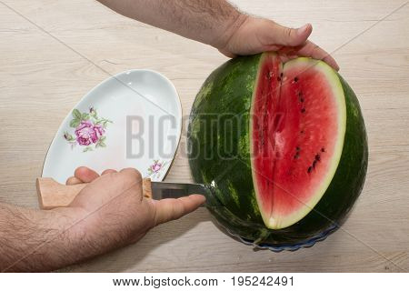 Men hand hold from on fresh watermelon cutting for eatin on table background. Male cutting a delicious sweet watermelon