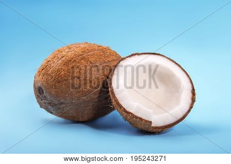 A close-up pair of beautiful coconuts on a bright light blue background. A coconut cracked in half. A tropical brown whole nut. Delicious summer fruits.