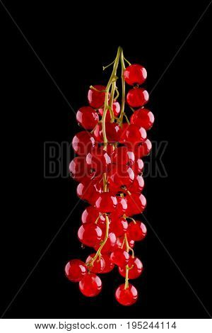 Close-up beautiful red currant on a matt black background. Delicious red currant. Fresh, tasty, healthy, raw, juicy, ripe concept. Nutritious vegan breakfast.