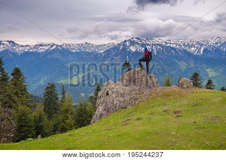 Adventurer Stands On The Big Stone On Edge Of Alpine Meadow