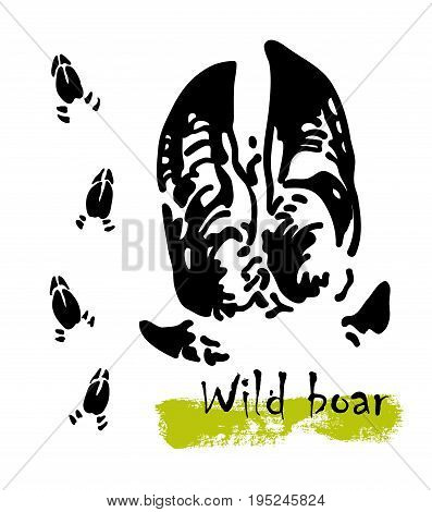 Wildlife animals. Traces of a wild boar. Footprints of variety of animals, illustration of black silhouette footprints. Vector illustration