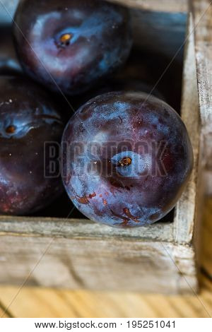 Ripe organic red prunes in wood garden box top view close up vibrant colors rustic style copy space autumn mood