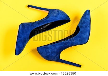 Elegance And Fashion Concept. Pair Of Fancy Suede Female Shoes