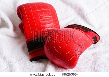 Boxing Gloves In Red Colour And Black Holders