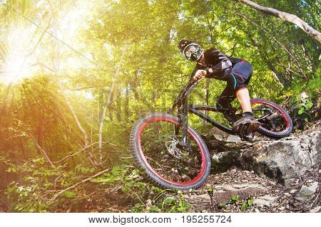 A young rider on a bicycle for downhill descends the rocks in the forest