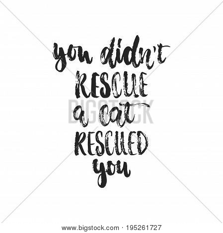 You didn't rescue a cat rescued you - hand drawn dancing lettering quote isolated on the white background. Fun brush ink inscription for photo overlays, greeting card or t-shirt print, poster design