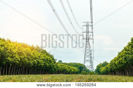 high voltage post.High-voltage tower sky background Twilight photo of power plant