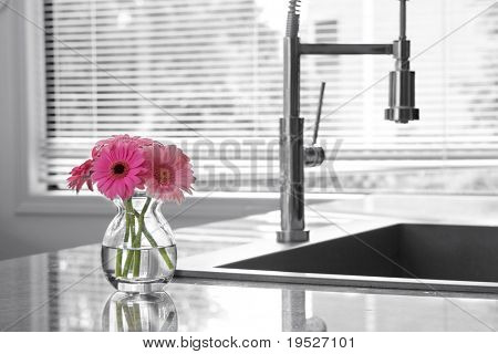 vase of daisies & kitchen sink - partially toned
