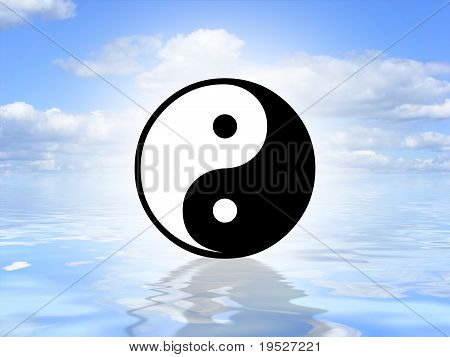 Yin Yang on water