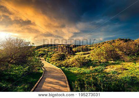 Hallett Cove conservation park boardwalk at sunset South Australia