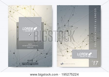 Modern vector template for brochure Leaflet flyer advert cover catalog, magazine or annual report. Business, science, medical design. Scientific cybernetic dots. Lines plexus. Card surface