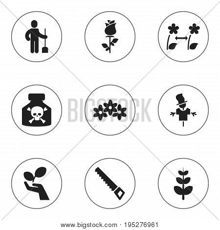 Set Of 9 Editable Planting Icons. Includes Symbols Such As Bugaboo, Breeding, Digger Human And More. Can Be Used For Web, Mobile, UI And Infographic Design.