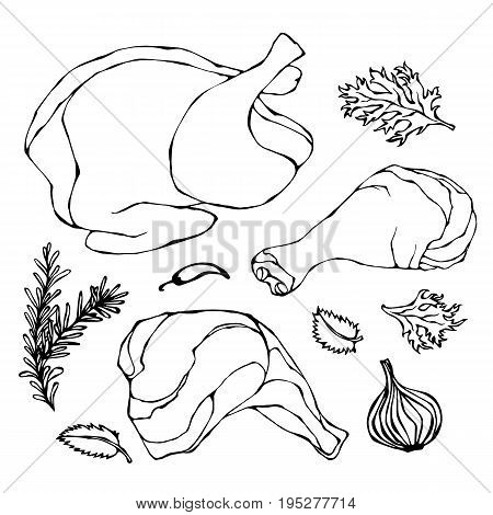 Chicken or Turkey Body Parts Set. Fowl Meat Fillets, Ham, Shank with Skin and Herbs. Realistic Doodle Cartoon Style Hand Drawn Sketch Vector Illustration. Isolated On a White Background.