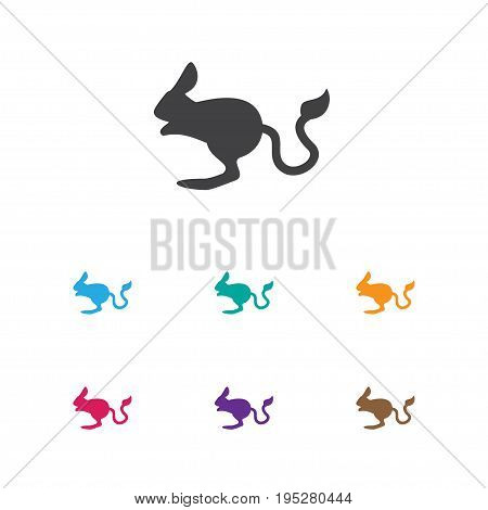 Vector Illustration Of Zoo Symbol On Desert Rodent Icon. Premium Quality Isolated Jerboa Element In Trendy Flat Style.