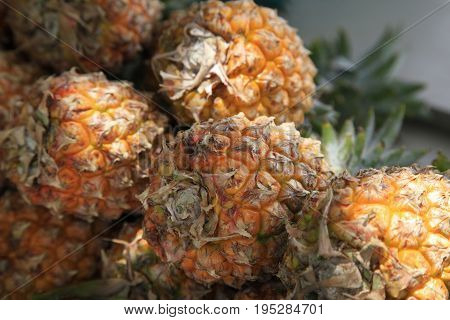Fruits pineapple in market close up on Mauritius
