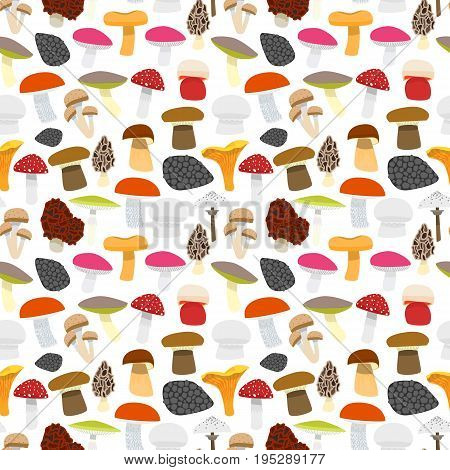 Cartoon Mushrooms Background Pattern on a White Flat Design Style Edible and Poisonous Nature Food. Vector illustration
