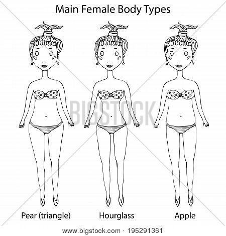 Main Female Body Shape Types. Hourglass, Pear or Triangle and Apple. Vector Illustration Isolated On a White Background. Realistic Hand Drawn Doodle Style Sketch.