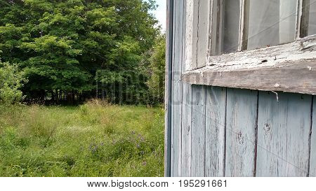 Blue Barn Siding on Farm Looking Out to Pasture