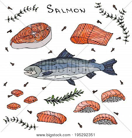 Steak, Filet, Slices and Sushi of Red Fish Salmon for Seafood Menu. Realistic Hand Drawn Doodle Style Sketch. Vector Illustration Isolated On a White Background.