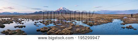 Panorama of Volcano Sajama. Nature of Altiplano Bolivia South America