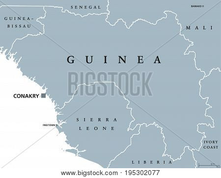 Guinea political map with capital Conakry. Republic and country on the West coast of Africa, formerly known as French Guinea. Gray illustration isolated on white background. English labeling. Vector.