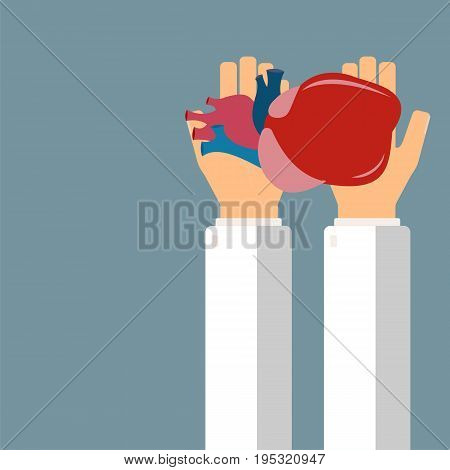 Doctor hold heart in hands. Transplantation or treatment heart. Healthcare concept. Vector illustration.