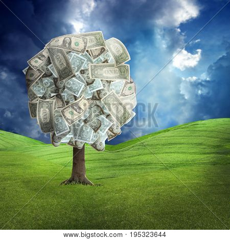 conceptual image of money tree on green landscape over stormy sky