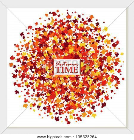 Autumn time greeting card with scattered maple leaves in traditional Fall colors - orange yellow red brown. Vector illustration. Isolated
