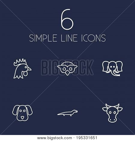 Set Of 6 Animal Outline Icons Set.Collection Of Owl, Elephant, Dog And Other Elements.