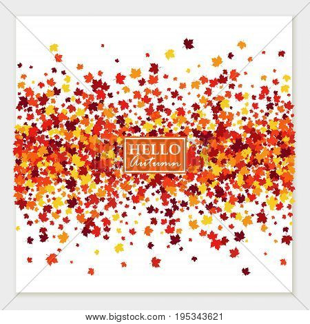 Autumn banner with scattered maple leaves in traditional Fall colors - orange yellow red brown. Vector illustration. Isolated