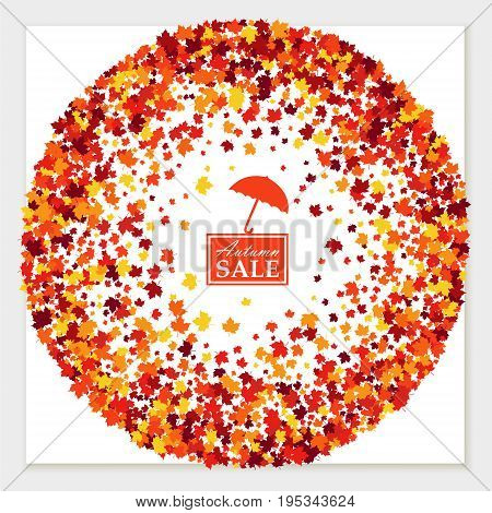 Autumn sale greeting card with scattered maple leaves in traditional Fall colors - orange yellow red brown. Vector illustration. Isolated