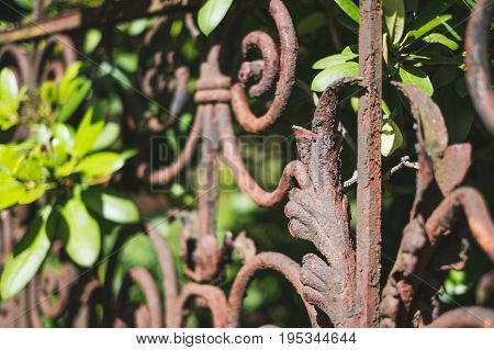 Old Rusted Fence, Rusty Railing, Wrought Metal Balustrade