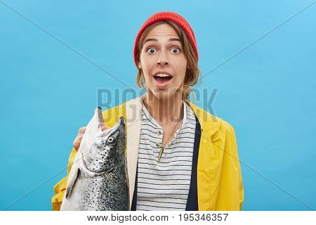 Cropped Studio Portrait Of Happy Excited Young Female Standing At Blank Blue Wall, Holding Large Fre
