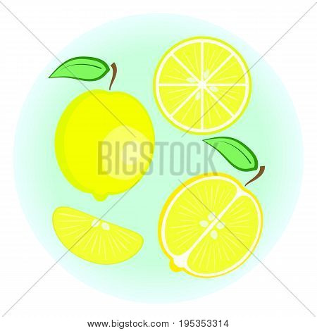 Flat vector yellow lemon set - fruit split in a half along and across fruit circle and wedge a slice of lemon. Cute colorful summer fruit