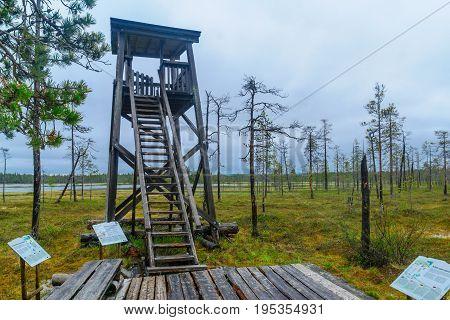 Tunturiaapa Trail, In Pyha-luosto National Park