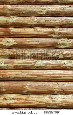 The Log Cabin Or Barn Unpainted Debarked Wall Textured Horizontal Background With Copy Space