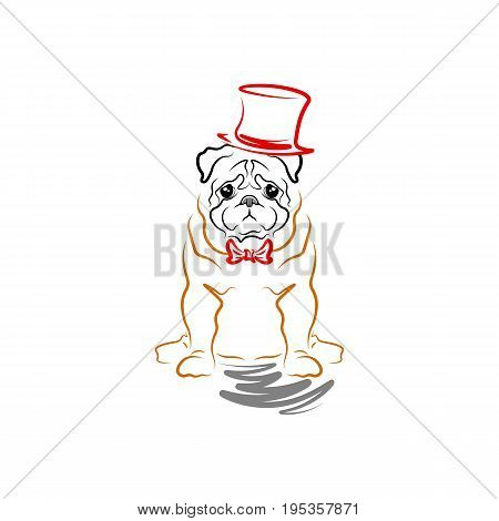 Caricature of a sad dog in a cylinder and a bow tie. Breed pug.