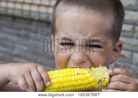 Photo Shoot Of A Child Eating A Corn Cob