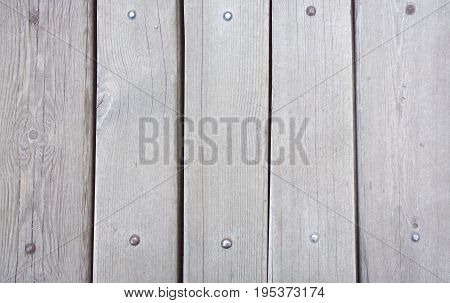 Old Wood Planks Texture. Tree Background. Batten