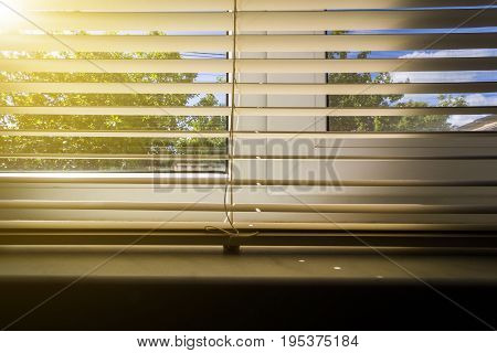 Horizontal Blinds On The Window